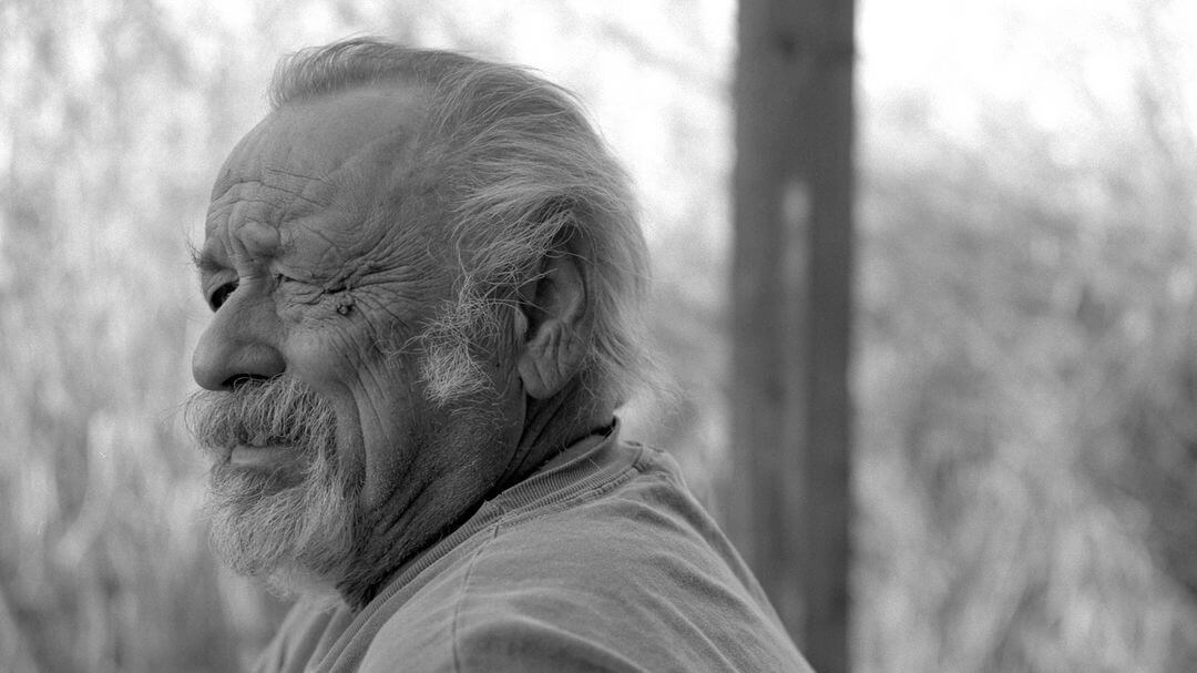 Portrait photo de Jim Harrison