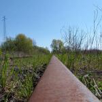 Photo d'une voie ferrée abandonnée